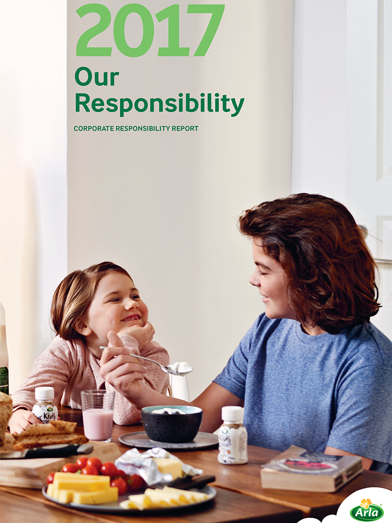 Our Responsibility - Report 2017