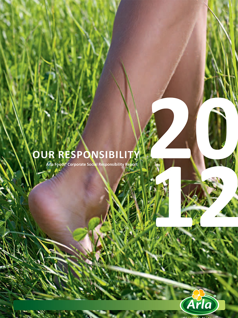 Our Responsibility - Report 2012